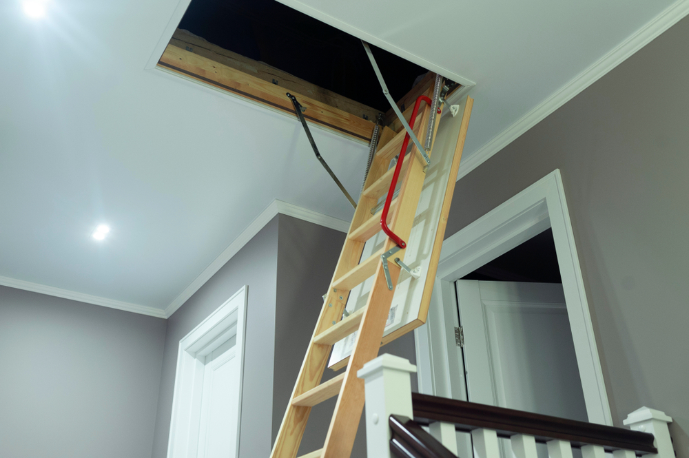 ladder to attic inspecting for mold