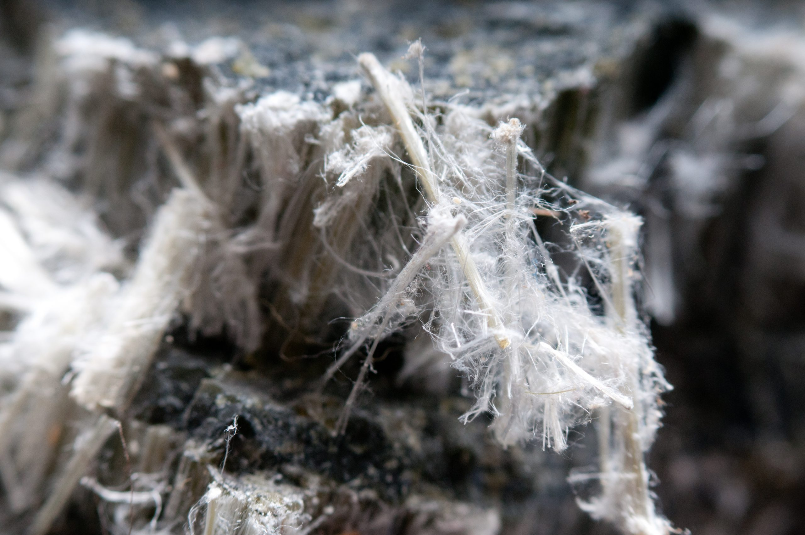Asbestos fibers are hazardous to health
